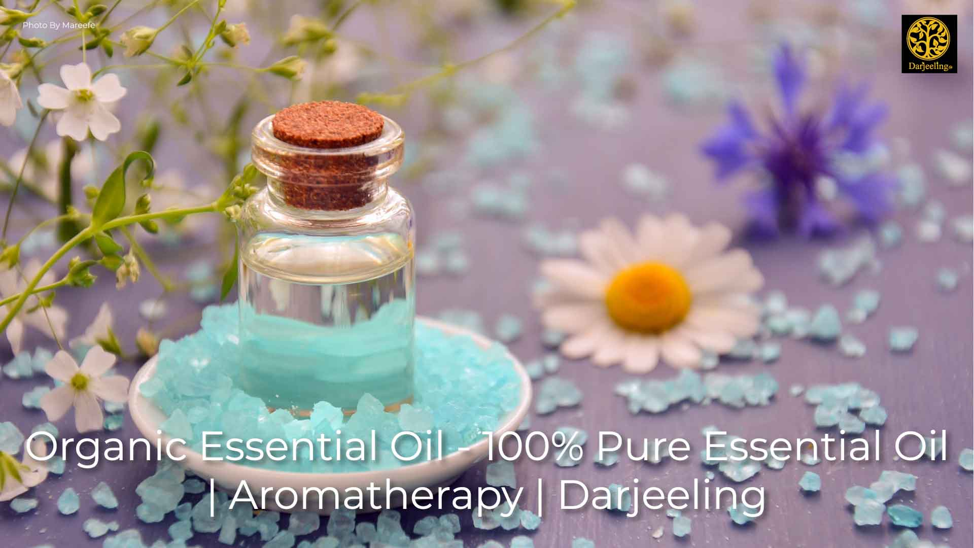 Organic Essential Oil - 100% Pure Essential Oil - Aromatherapy - Darjeeling